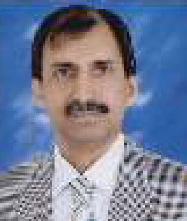 Hamid Saleem